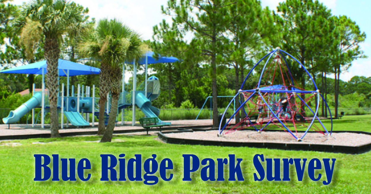 Graphic that includes a large picture of Blue Ridge Park with people playing on the playground equipment and the words
