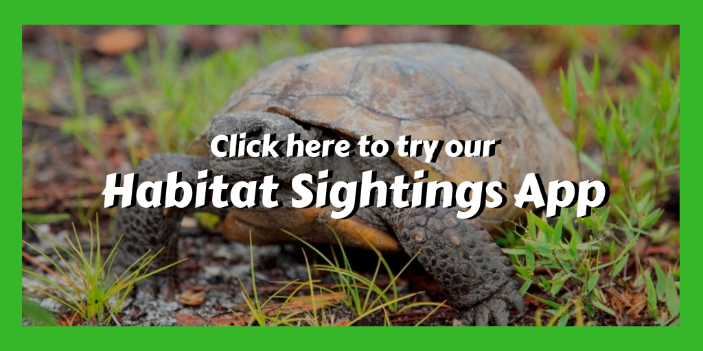 Habitat Sightings Website Graphic