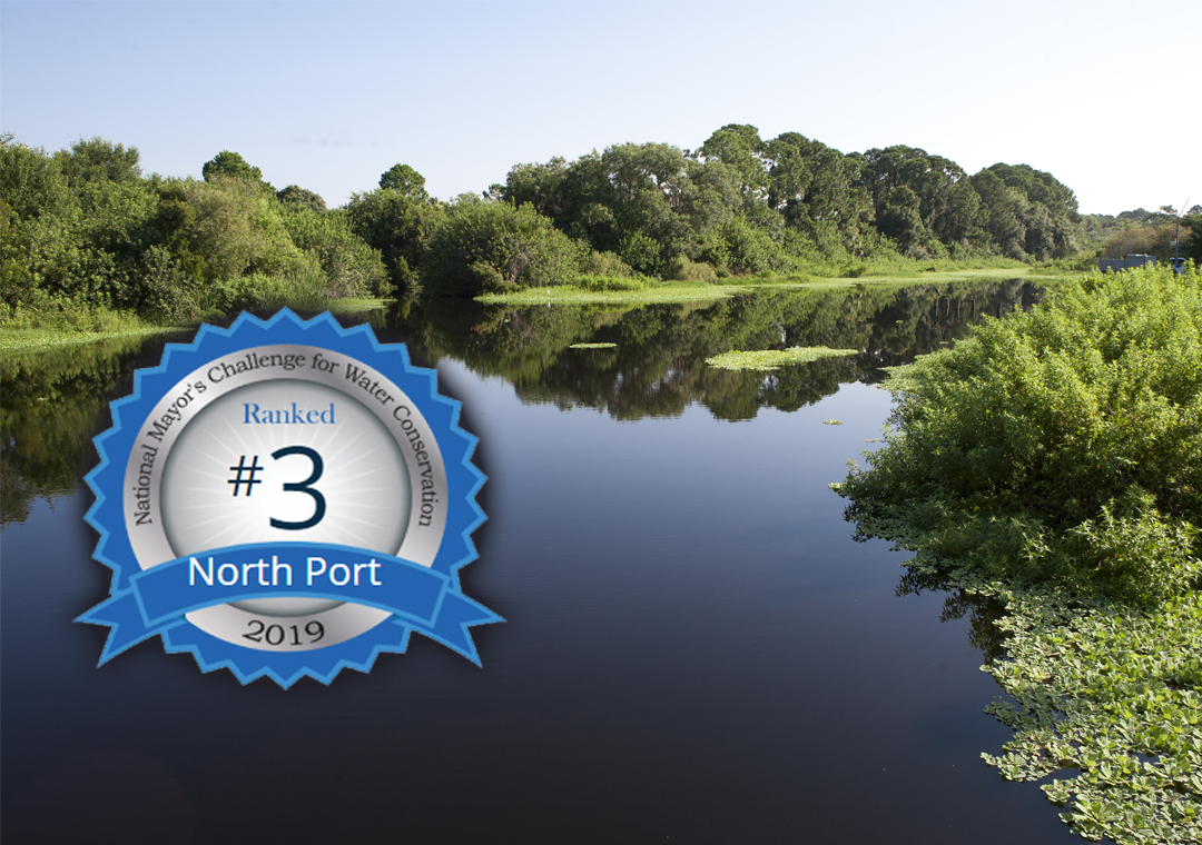 North Port Waterway No 3 Badge