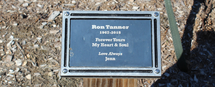 Tribute Plaque under a tree with an inscription for a loved one
