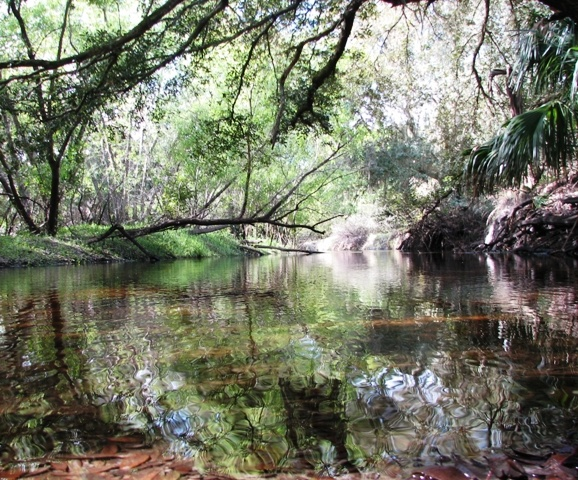 Myakkahatchee Creek